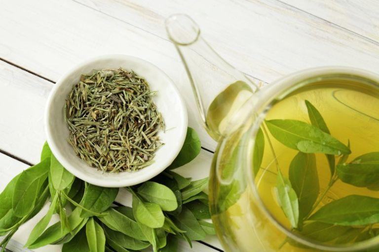 Bài thuốc từ lá trà xanh - điều trị rối loạn lo âu bằng đông y